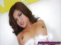 Asian Ladyboy on White Lingerie Does Doggysty